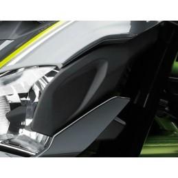 Face Avant Gauche Kawasaki Z900 2017