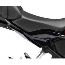 Rear Panel Right Honda CB300R