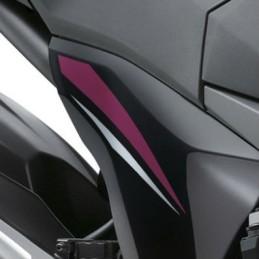Pattern Pivot Right Kawasaki Z800 Sugomi Edition