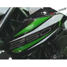 Pattern Shroud Outer Left Kawasaki Z250 2019 2020