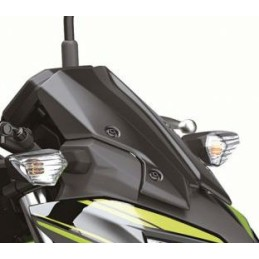 Bulle Saute Vent Kawasaki Z650 2020