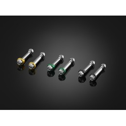 Vis Stainless Leviers Bikers Kawasaki Z900RS