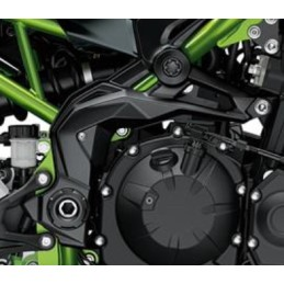 Cover Pivot Right Kawasaki Z900 2020