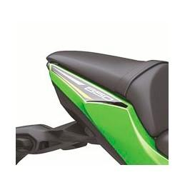 Pattern Rear Cover Right Kawasaki NINJA 650 2020 Green KRT