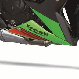 Set Patterns Lower Cowling Right Kawasaki NINJA 650 2020 Green KRT