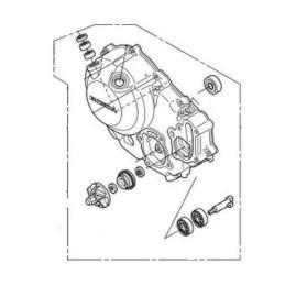 Cover Right Crankcase Honda CRF300