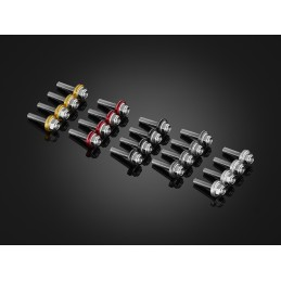Stainless Bolts Set for Windshield Bikers Kawasaki