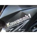 Sticker Logo Flanc Avant Kawasaki Z800