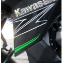 Pattern Shroud Left Kawasaki Z800