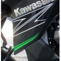 Sticker Motif Flanc Avant Gauche Kawasaki Z800