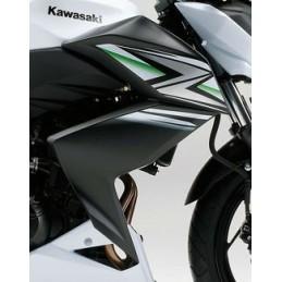 Carénage Flanc Avant Droit Kawasaki Z250